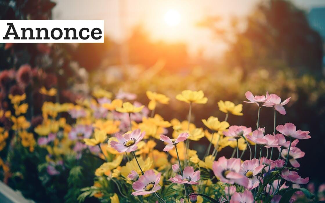 Gør plads i haven til dine foretrukne aktiviteter
