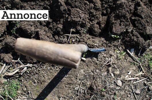 Gør haven sommerklar – uden at få beskidte fingre