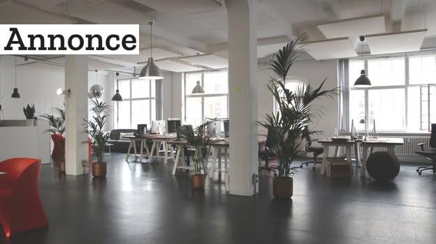 Lille nordjysk virksomhed holder kontormiljøet rent