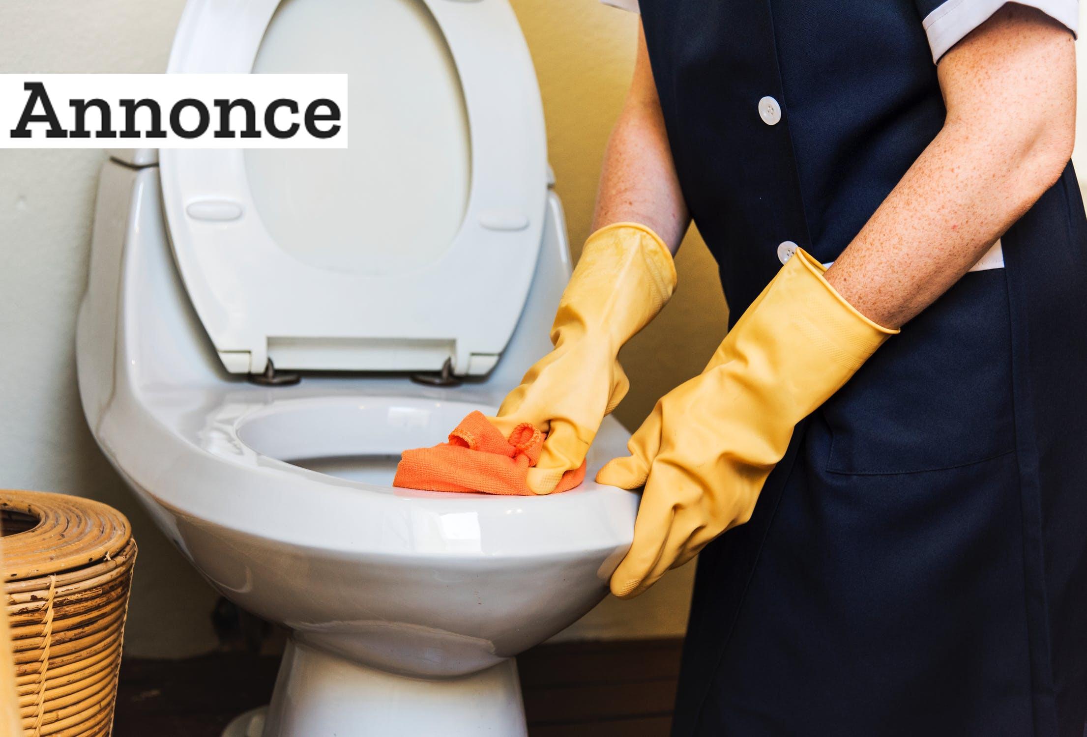 Professionelle firmaer bruger professionel rengøringshjælp