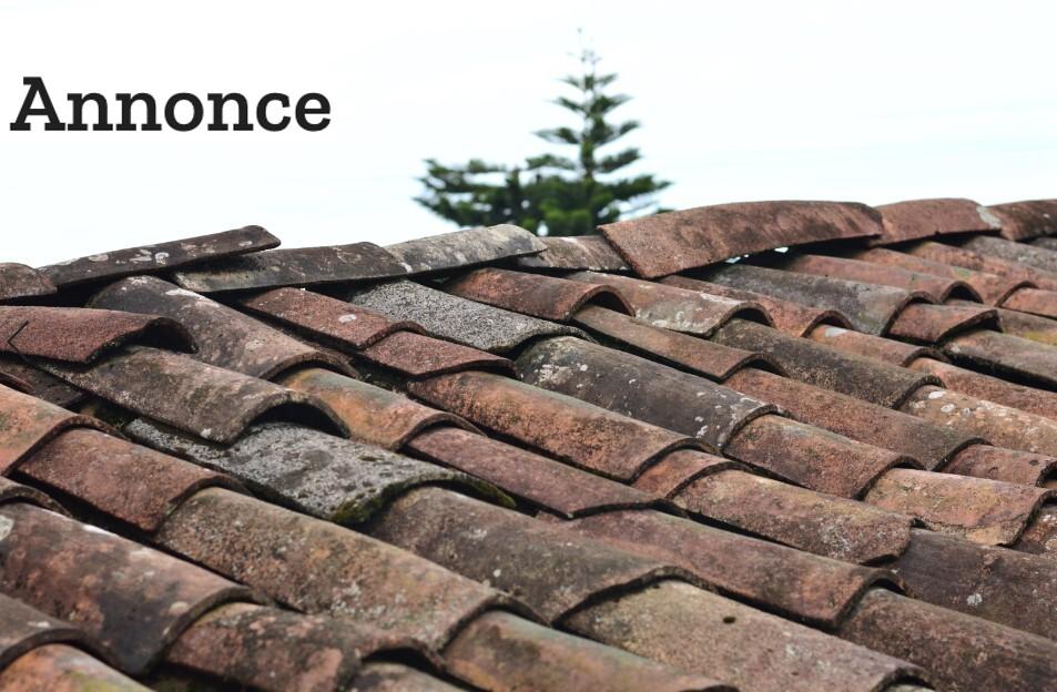Har din bolig brug for et nyt tag eller en ny facade?